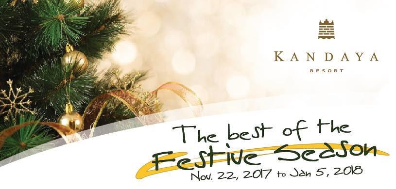 The Best of the Festive Season